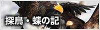探鳥・蝶の記